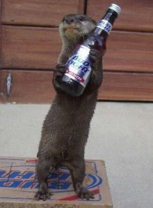 An otter holding a bottle of beer.