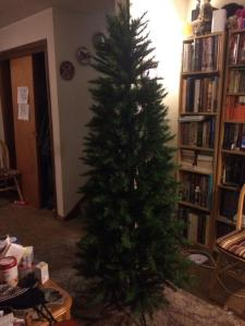 Our undecorated artificial tree.