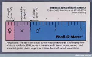 "Click to embiggen. The picture is ""satire"" but the measurements are real medical guidelines."