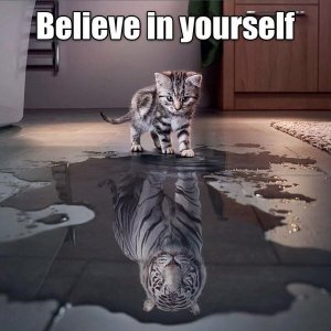 Believe in yourself (click to embiggen)