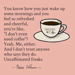 """You know how you just wake up some mornings and you feel so refreshed and cheerful, you're like 'I don't even need coffee'? Me, either. And I don't trust anyone who says they do. Uncaffeinated freaks.""—Nanea Hoffman, SweatpantsAndCoffee.com"