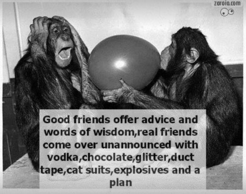 """Good friends offer advice and words of wisdom, real friends show up unannounced with vodka, chocolate, glitter, duct tape, cat suits, explosives, and a plan."""