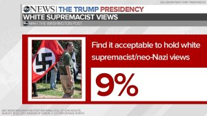 9% of the respondents to an ABC News poll say that it's acceptable for someone to hold White Sutpremacist/neo-Nazi views.