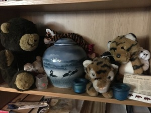 This is Ray's new resting place since the move. His urn guarded by teddy bears, tigers, penguin, and a mouse.