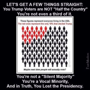 """""""Let's get a few things straight: You Trump voters are NOT 'half the country.' You're not even a third of it. You're not a 'Silent Majority.' You're a Vocal Minority, and in truth, you lost the Presidency."""""""