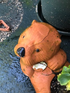 Our poor otter planter cracked and had large chunks of terra cotta break off.