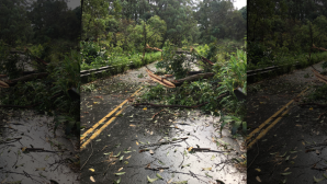 The Hawaii Department of Transportation reports flooding and debris left by Hurricane Olivia have blocked the  Hana Highway near Hana on the island of Maui. (Hawaii Department of Transportation via AP)
