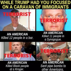 Straight, male, (mostly) white, trump-supporting Americans are committing all the domestic terrorism...