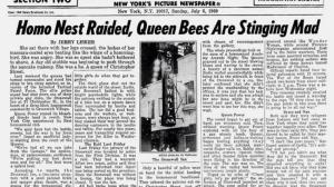 The New York Daily News, a bit over a week after the first riot.