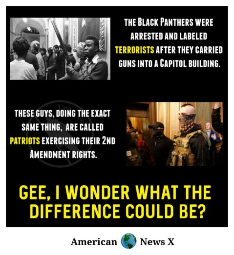 """The Black Panthers were arrested and labeled terrorists after they carried guns into a capitol building. These guys, doing the exact same thing, are called patriots exercising their 2nd Amendment rights. Gee, I wonder what the difference could be?"""