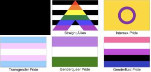 Many, many more variants and alternatives to the rainbow flag.