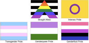 Many, many more variants and alternatives to the rainbow flag.