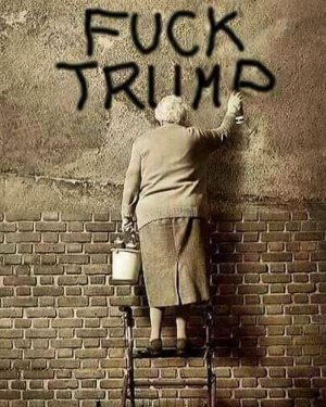 "Elderly woman on a latter paints, ""Fuck Trump"""