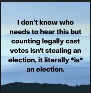 """I don't know who needs to hear this but counting every legally cast votes isn't stealing an election, it literally  *is* an election."""