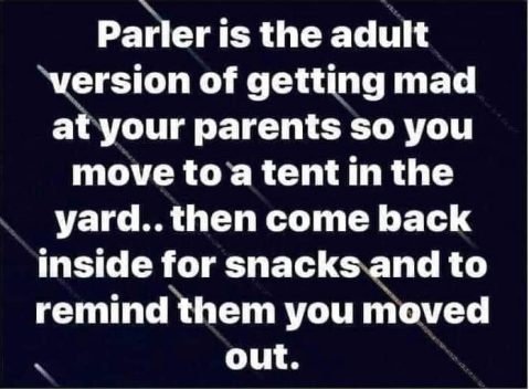 """Parler is the adult version of getting mad at your parents so you move to a tent in the yard... then come back inside for snacks and t remind them you moved out."""