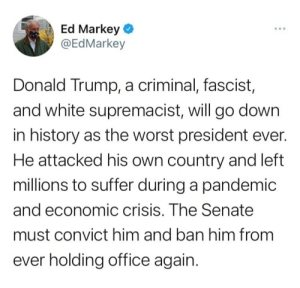 """Donald Trump, a criminal, fascistm, and white supremacist, will go down in history as the worst president ever. He attacked his own country and left millions to suffer during a pandemic and economic crises. The Senate must convict him and ban him from ever holding office again."""