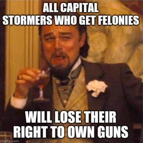 """All Capitol stormers who get felonies will lose their right to own guns."""